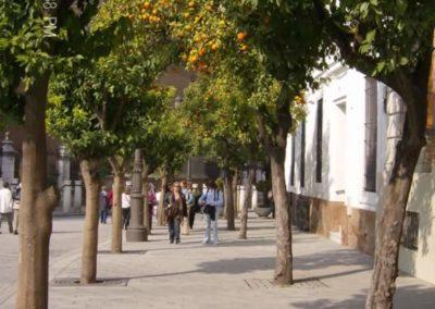 6-Feb-Seville-1